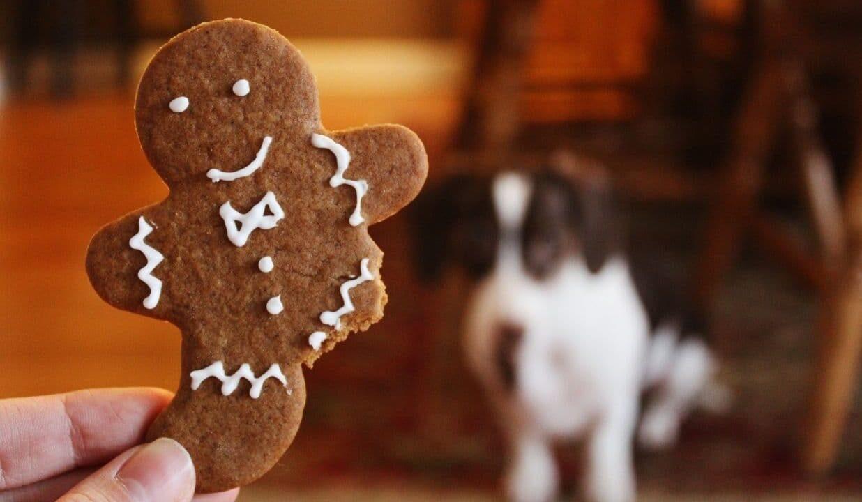 Jak włączyć dzieci w świąteczne przygotowania?