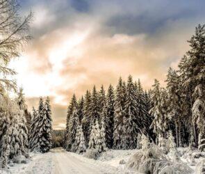 Za co kocham zimę?